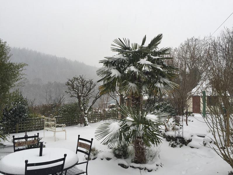 snow at springfield cottage devon